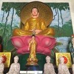 Kêu gọi phát tâm Tượng Quan âm gỗ đứng 1.8m – Niệm Phật Đường Thọ Bình, tỉnh Đồng Nai