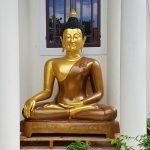 Kêu gọi đóng góp xây dựng Lớp học Tình thương và nhà Tứ Giác an trí Tượng Phật - Chùa Định Quang, Thừa Thiên Huế