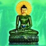 Câu chuyện về tượng Phật ngọc lớn nhất thế giới đến Đà Nẵng