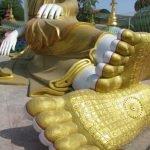 Tướng bàn chân đức Phật