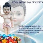 Pháp thoại: Cảm Niệm Và Ý Nghĩa Cúng Dường Phật Đản - Phật Lịch 2562